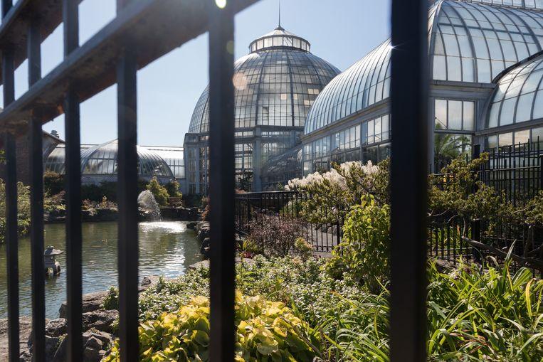 In het park Belle Isle bouwde Albert Kahn een grote serre, officieel de 'Anna Scripps Whitcomb Conservatory' genaamd.  Beeld Trui Moerkerke