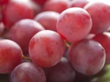 Une grappe de raisins adjugée à 10.000 euros