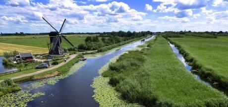 Boer Willem ging op date in de Zouweboezem, en dat is goed te begrijpen