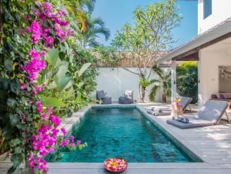 Mooier wordt een stadstuin niet: met exotische planten en zwembad creëer je een tropisch paradijsje