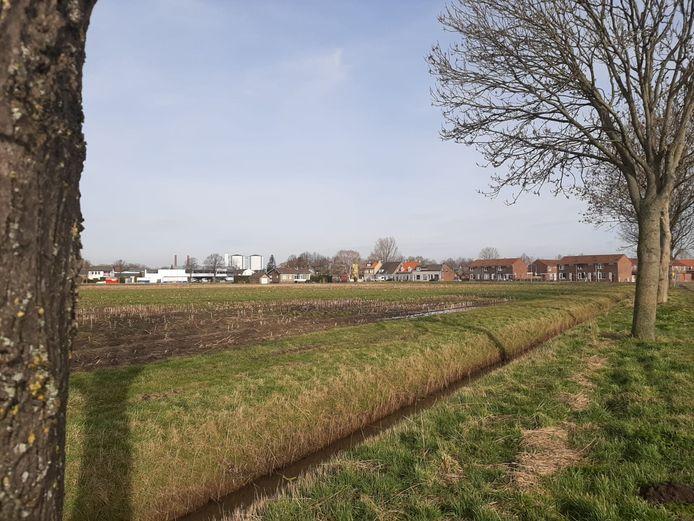 Een stuk bouwgrond in Zevenbergen-Oost.