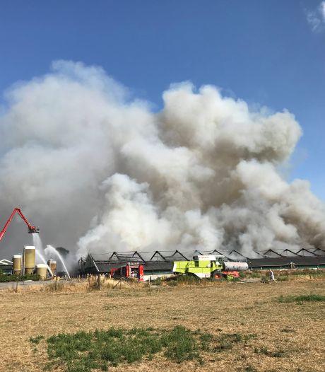 2.500 varkens omgekomen tijdens grote schuurbrand in Didam