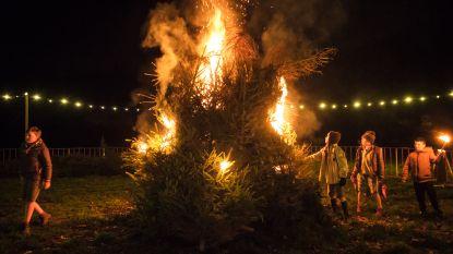 Borsbeek houdt jaarlijkse kerstboomverbranding op 11 januari