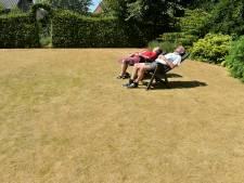 Help, de tuin droogt uit! Dit kun je doen ter bescherming