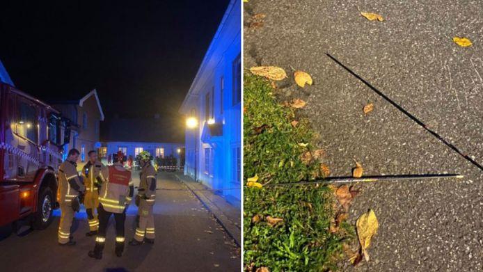Un homme armé d'un arc et de flèches a tué plusieurs personnes et en a blessé plusieurs autres mercredi à Kongsberg, dans le sud-est de la Norvège.