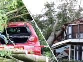 KNMI bevestigt: Leersum getroffen door valwind