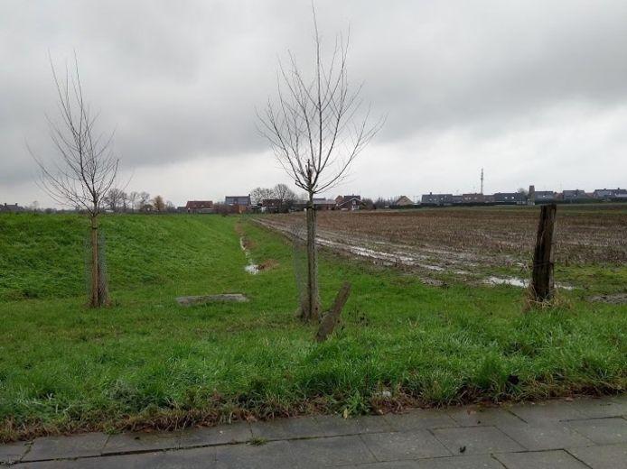 Een foto van het projectgebied vanuit de Koolskampstraat