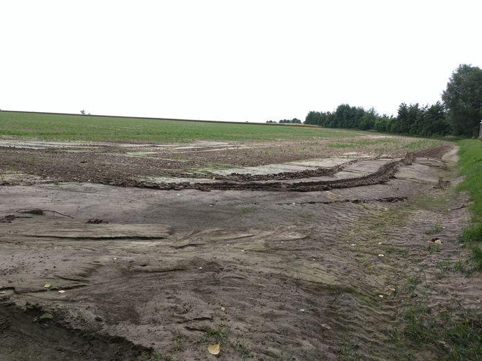 Overheid investeert in erosiebestrijdingsprojecten, ook in het Hageland.
