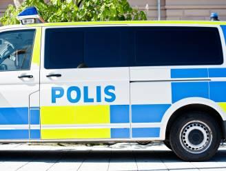 Zweedse agenten stuiten bij politie-inval op schilderijen van Picasso, Warhol en Chagall