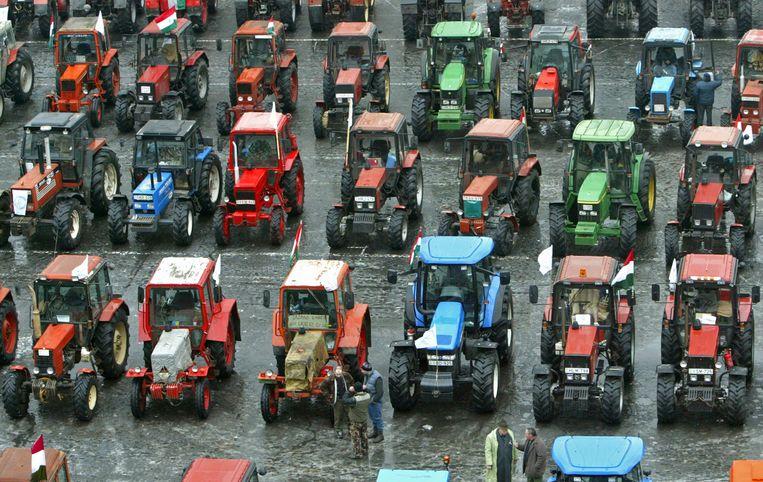 Hongaarse boeren eisen in 2005 hun deel van de subsidiekoek op. Beeld REUTERS