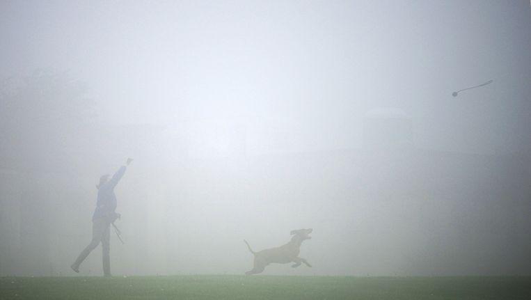 Een vrouw en een hond in de mist in Londen. Beeld reuters