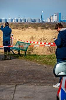 Stoffelijk overschot in natuurgebied Oostvoorne van vermiste Tamara Sparreboom (36)