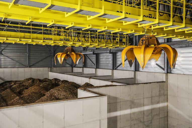 Milieuorganisaties pleiten ervoor dat subsidies voor nog niet gebouwde biomassacentrales worden teruggedraaid. Zij stellen dat biomassa bij verbranding op korte termijn zelfs meer uitstoot dan steenkool. Beeld Eva Plevier
