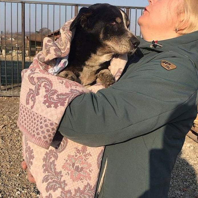 Irina met hond Dik.
