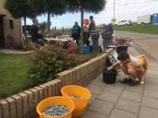 Macharen overspoeld met kopers en  'schuumers' op Tuintjesmarkt tijdens Burendag