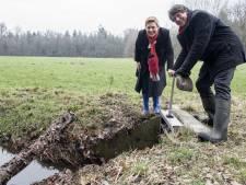 Middeleeuwse vloeiweiden nu passende 'klimaatmaatregel'