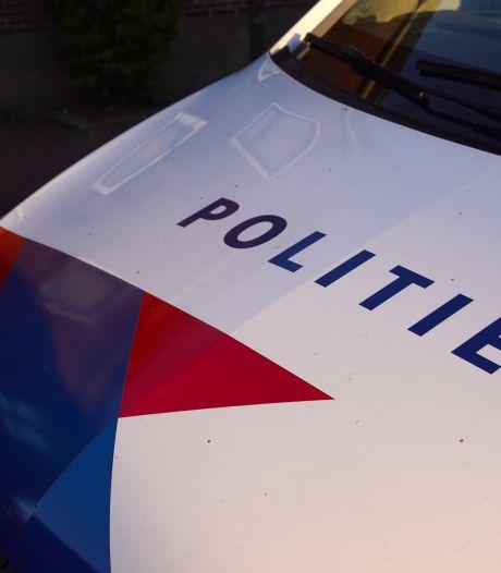 Een drukke week in het Delftse Hout: wildplassen, baldadigheid en rijden zonder rijbewijs