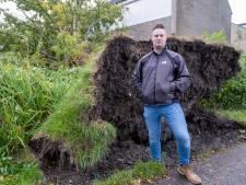 Omgewaaide boom zorgt voor ravage in de tuin van Marcel: 'Zeker duizenden euro's schade'