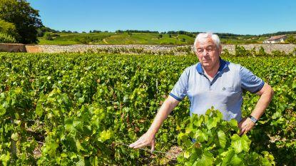 Zenuwenoorlog tussen boeren en champagnehuizen