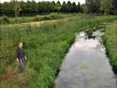 Verbazing over 'halvering' natuurzone langs Koningsvliet