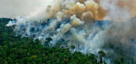 Brazilië onder druk gezet om omstreden ontbossingswet in te trekken