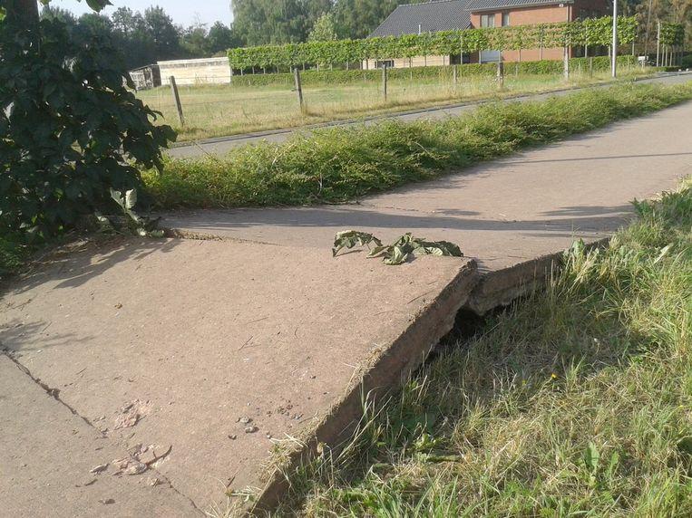 Een lezer stuurde ons dit beeldje van het fietspad richting Erperheide