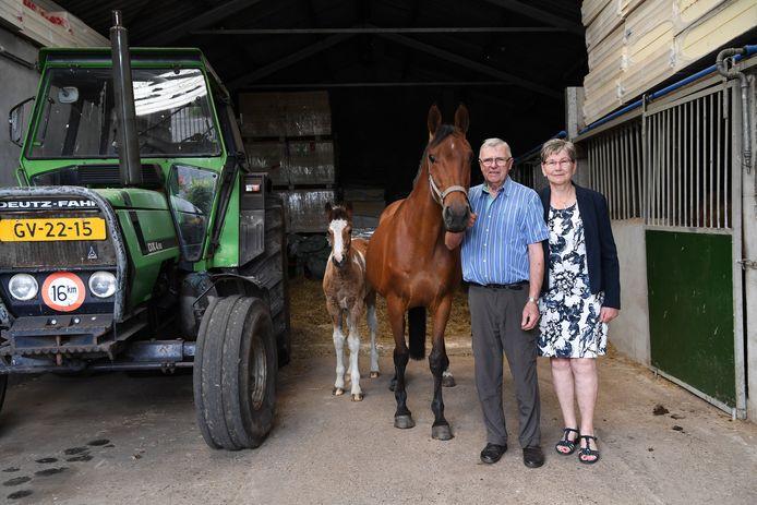 CASTELREE, Jan Stads / Pix4Profs Paardenmelkerij van t Groeske. Fons en Dina Backx - Huybrechts