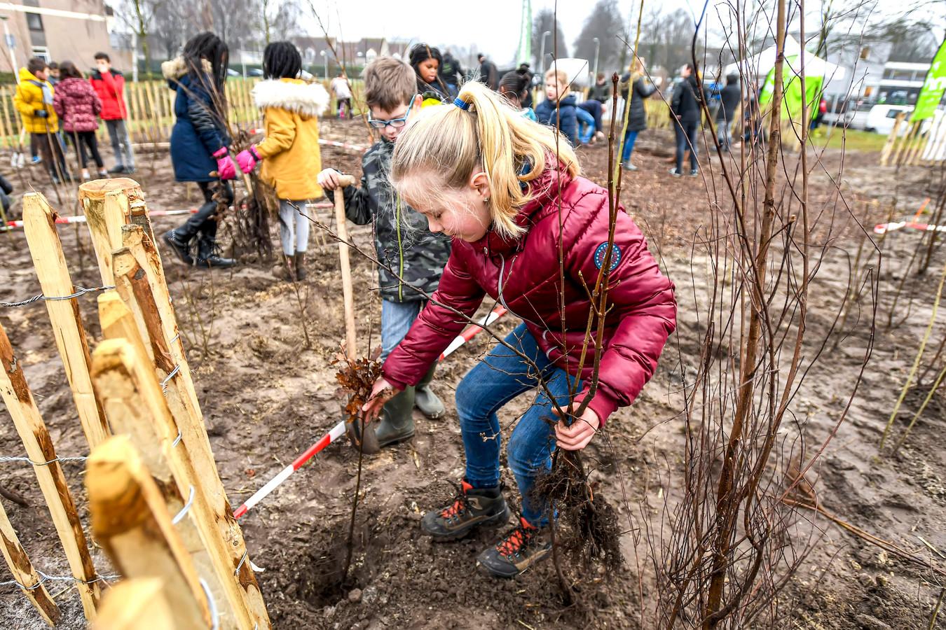 Tegenover basisschool De Kroevendonk wordt het eerste Tiny Forest van Roosendaal geplant.