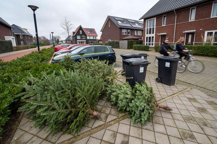 Al voordat het inzamelen begint, hebben Huissenaren hun boom op straat gelegd. Foto: Gerard Burgers.