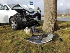 Automobilist ramt bord en boom in Harbrinkhoek