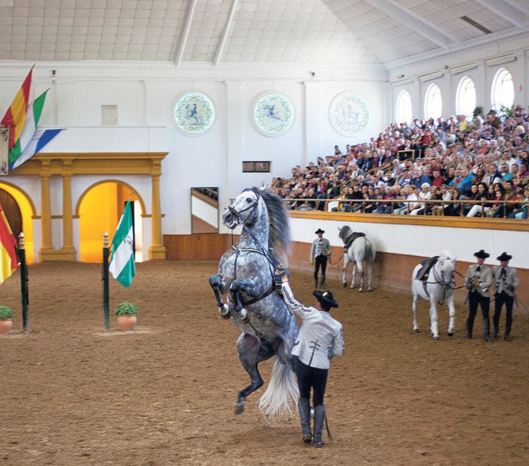 Paardenshow op de ruiterschool Real Escuela Andaluza del Arte Ecuestre in Jerez de la Frontera.
