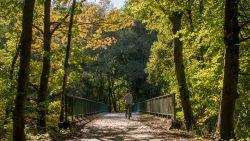 De pronkstukken van de Ardennen: hier beleef je de herfst op zijn best