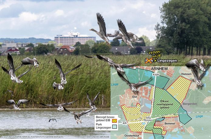 Een gebied dat grotendeels Park Lingezegen overlapt, wordt door het Economisch Instituut voor de Bouw gezien als goed geschikt bouwgrond.