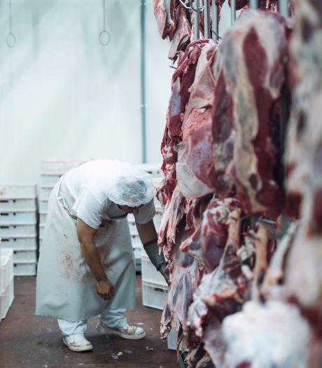 Arbeidsmigrant is vaak sluitpost vleesindustrie