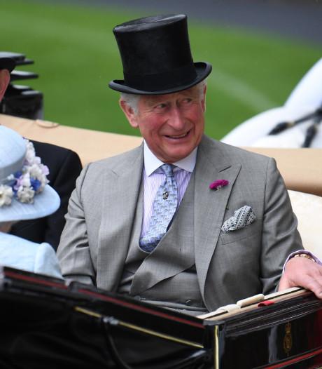 """Le soutien du Prince Charles aux médecines alternatives jugé """"obscène"""" au Royaume-Uni"""
