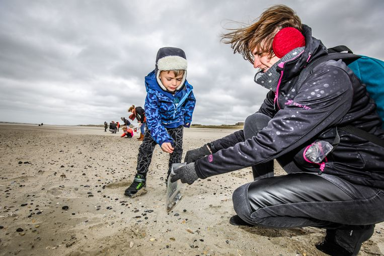 Soms is wetenschap kinderspel. 800 jonge en minder jonge 'wetenschappers' trokken het voorbije weekend naar het strand. Beeld Benny Proot