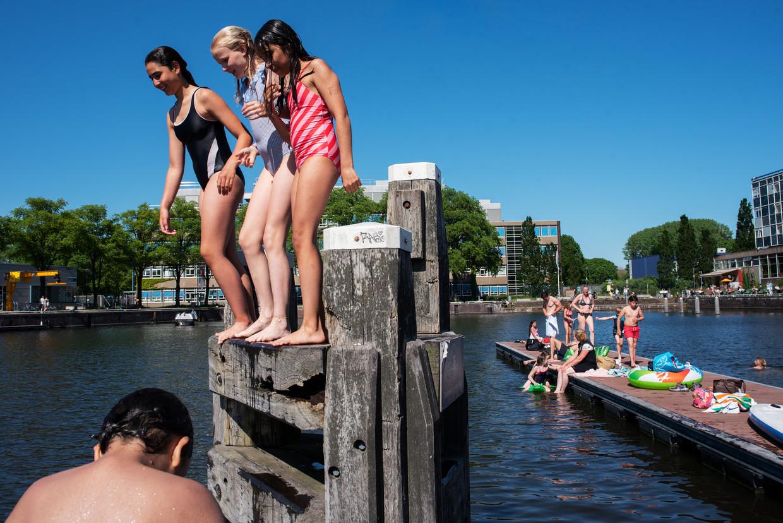 Zwemmers op het Marineterrein in Amsterdam. 'We zwemmen hier altijd. Dit is ons zwembad!'  Beeld Sabine van Wechem