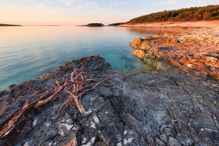 Kaap Kamenjak, Kroatië Beeld Robert Harding/F1online
