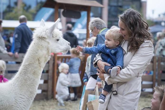 Tientallen dieren konden zaterdag in het centrum van Nijverdal worden geknuffeld.