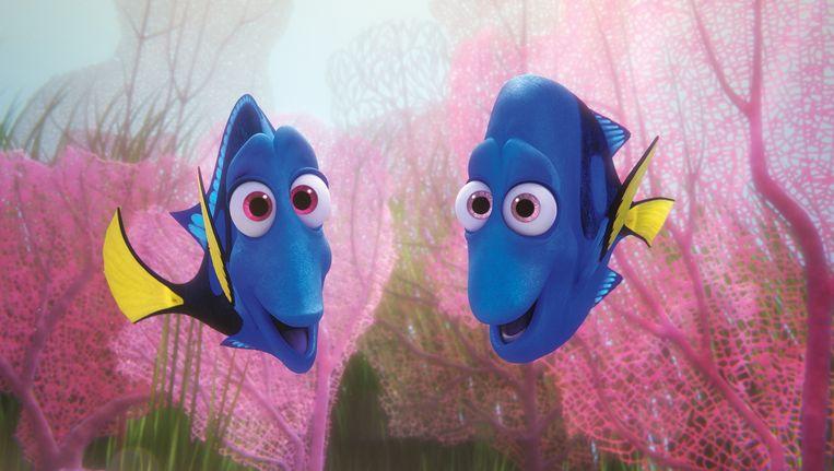 Jennie en Charlie uit Finding Dory, allebei Picasso doktersvissen. Beeld Pixar