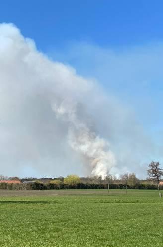 """Brandweer zet blushelikopters in voor immense brand in natuurgebied Groot Schietveld in Brecht: """"Gevolg van schietoefening"""""""