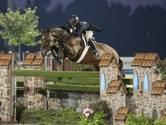 In Strijbeek gefokte Cuba 'paard van het jaar' in Amerika: 'Kroon op je werk'