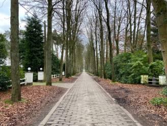 Paardenkastanjes en historische betontegels van Mostheuvellaan zullen toch verdwijnen