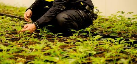 Werkendam sluit drugspand aan Sasdijk voor drie maanden