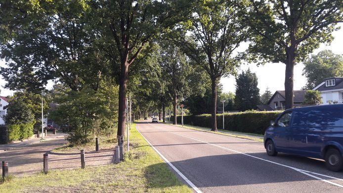 Verkeer op de Steenbergseweg in Halsteren zorgt voor enorme  geluidsoverlast, zo stellen bewoners die massaal een petitie hebben getekend om daar wat aan te doen.