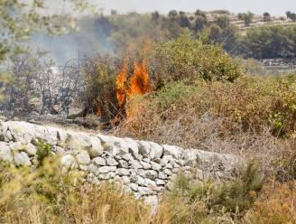 Bosbranden in Zuid-Italië eisen opnieuw een leven
