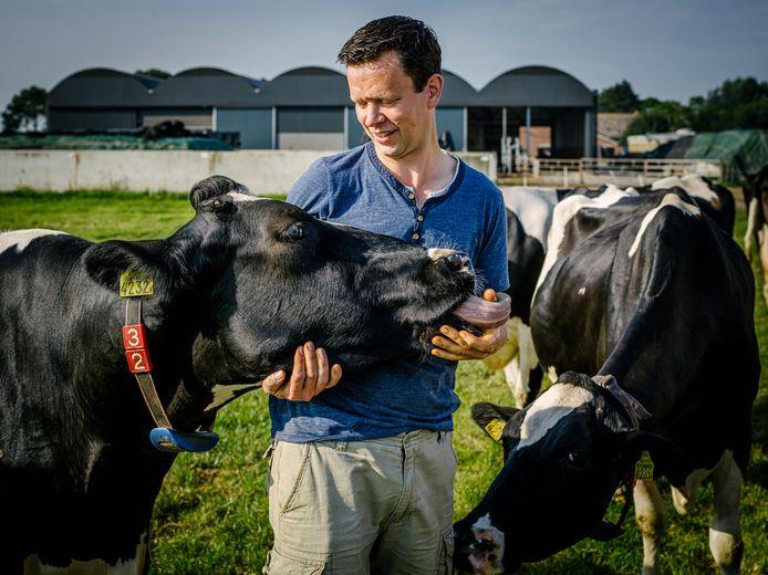 Melkveehouder Ard van Veen tussen zijn melkkoeien in Bodegraven.