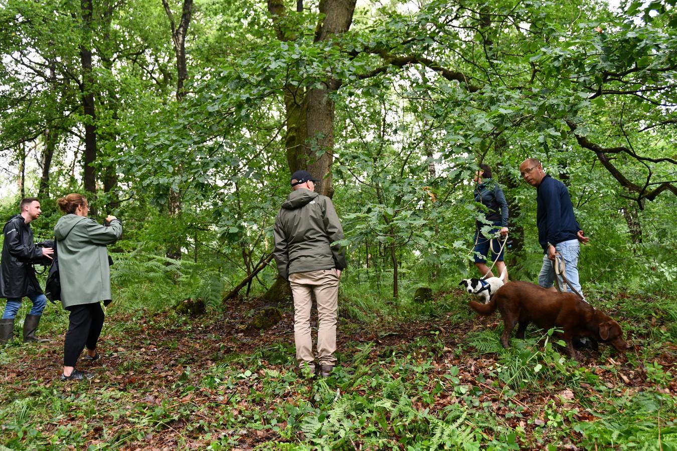 """Le corps de Conings était situé """"au pied d'un arbre, sur un talus, dont la vue était cachée par les fougères"""