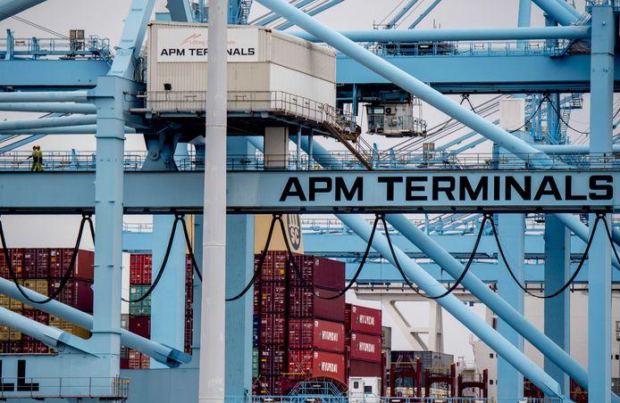 Een van de twee containeroverslagbedrijven van APM op de Maasvlakte, die tijdens een hackaanval stil kwamen te liggen.