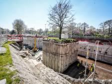 """Un vieux hêtre fait de la résistance à Bruges: """"Nous mettons tout en œuvre pour le sauver"""""""